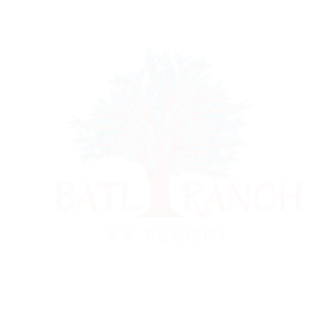 image of batlranch medium logo in white